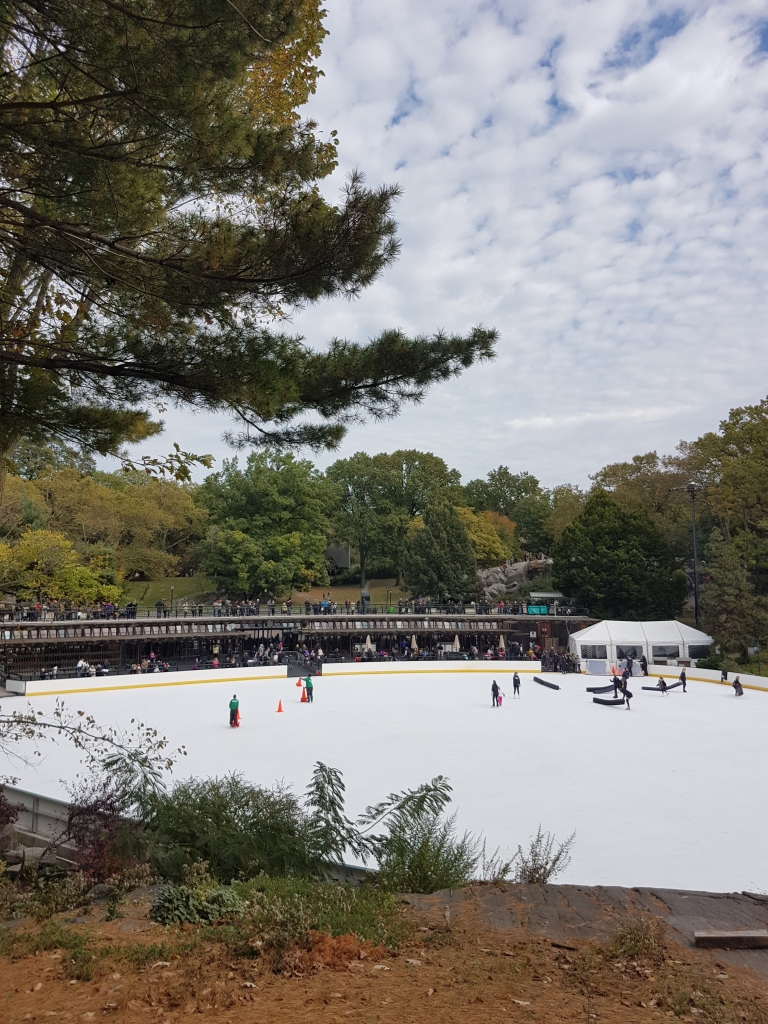 patinoire central park.jpg
